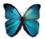 Pixlr Editor,画像,編集